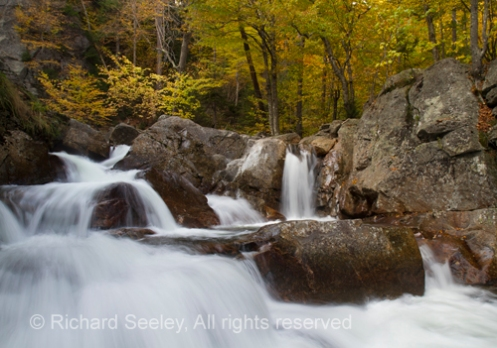 Glen Ellis Falls in the Foliage